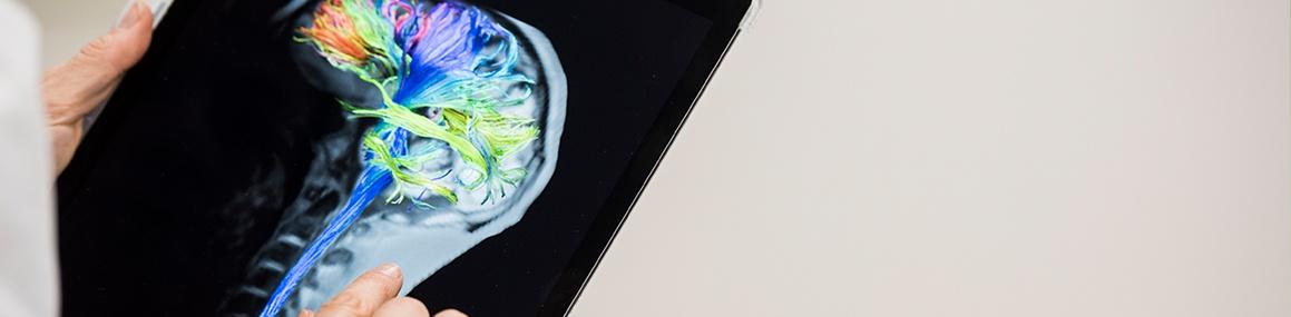 Header Diagnóstico por la imagen