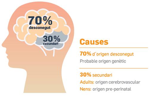 Causa epilepsia