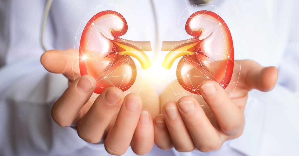 10 consejos para cuidar tus riñones | Clínica Corachan